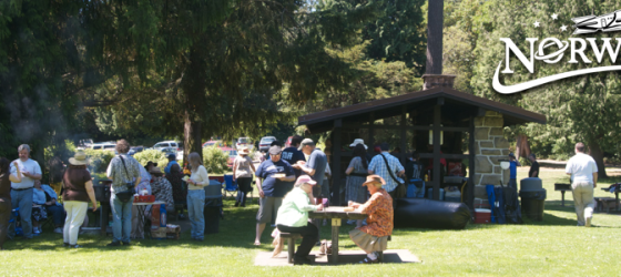 NWC37 Volunteer Appreciation Picnic