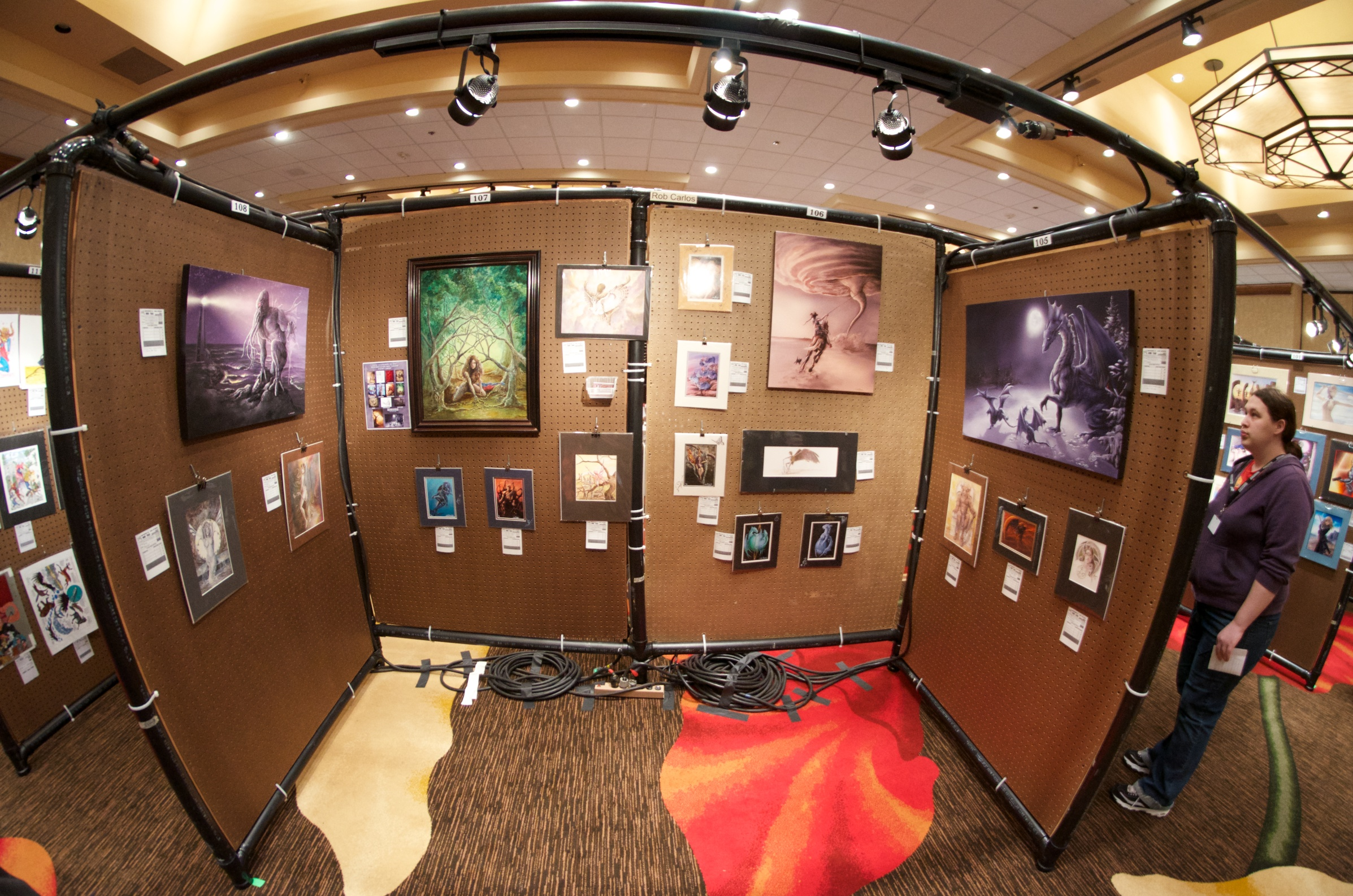 Art Show Panels In Use