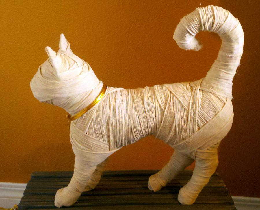 Mummy Cat by Ronda Grim